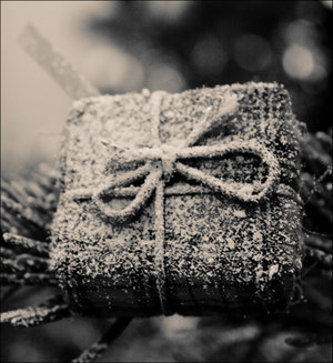 Present_for_old_Christmas_by_MarieMagenta